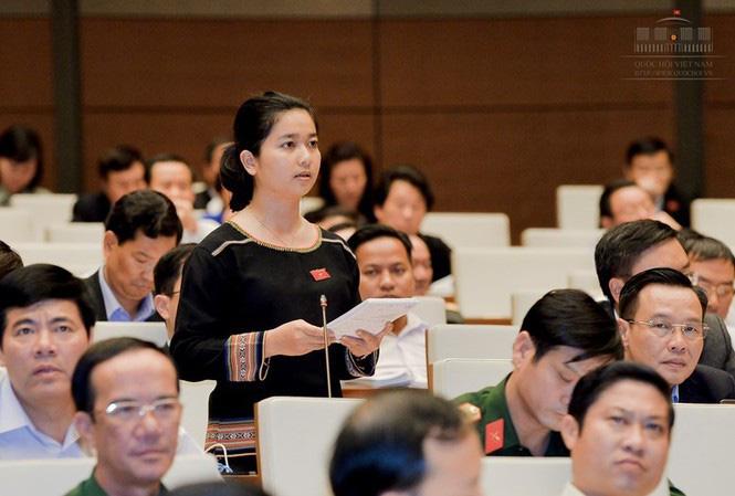 Đại biểu Quốc hội Gia Lai nói cây cao su thải khí CO2, chuyên gia ngành lâm nghiệp nói gì? - Ảnh 1.