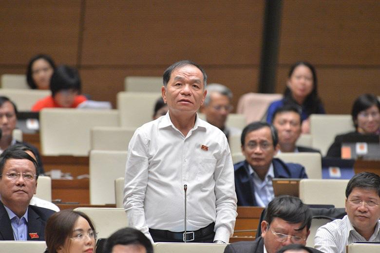 ĐBQH tranh luận với Phó Thủ tướng Vũ Đức Đam về việc cách chức Hiệu trưởng Đại học Tôn Đức Thắng - Ảnh 3.