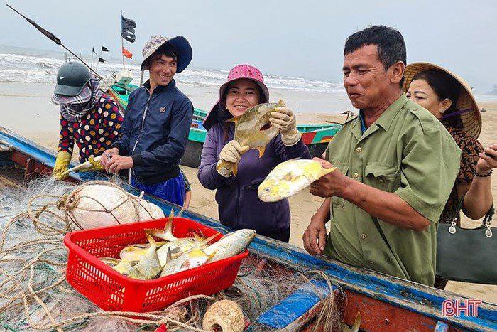 Hà Tĩnh: Tổ dân phố này ra biển đánh bắt, bất ngờ trúng loài cá này ví như lộc biển, thương lái tranh nhau mua - Ảnh 2.