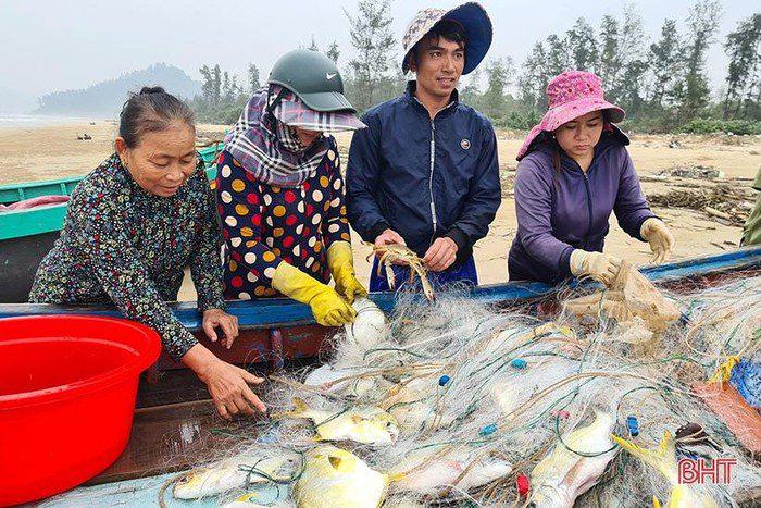 Hà Tĩnh: Tổ dân phố này ra biển đánh bắt, bất ngờ trúng loài cá này ví như lộc biển, thương lái tranh nhau mua - Ảnh 1.