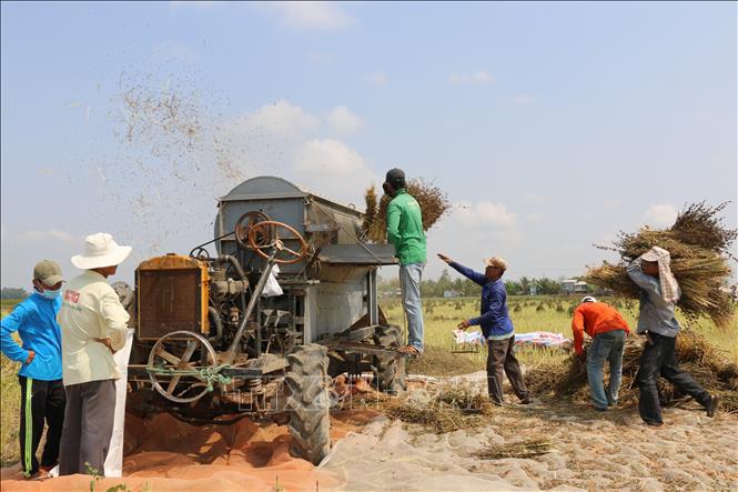 Đồng Tháp: Một nông dân sáng chế ra hàng loạt máy nông nghiệp chưa từng có ở Việt Nam, bán ra cả nước ngoài - Ảnh 3.