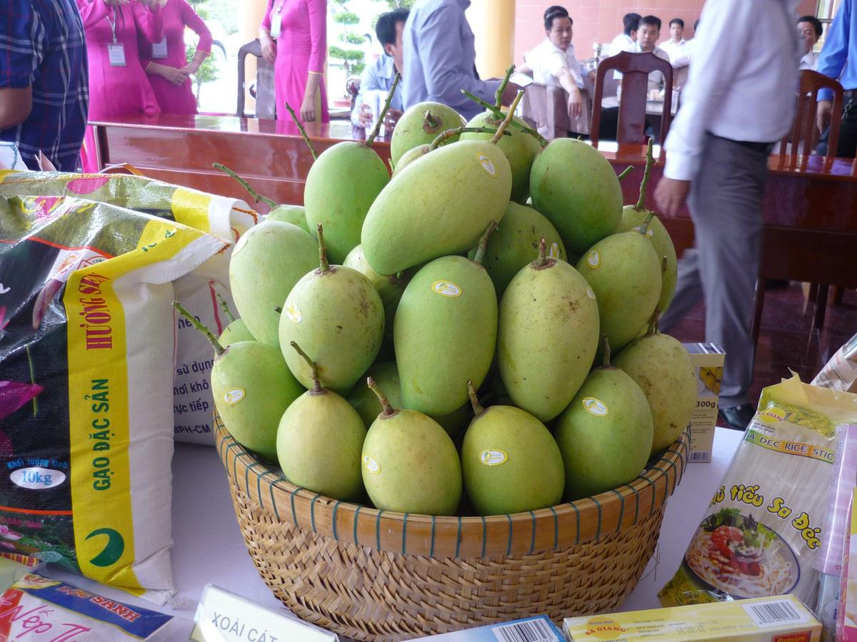 Xuất khẩu rau quả giảm mạnh, điểm sáng duy nhất là trái xoài - Ảnh 1.