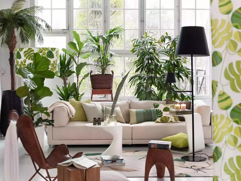 7 yếu tố phong thủy giúp ngôi nhà tràn đầy năng lượng tích cực, phúc khí ghé thăm - Ảnh 10.