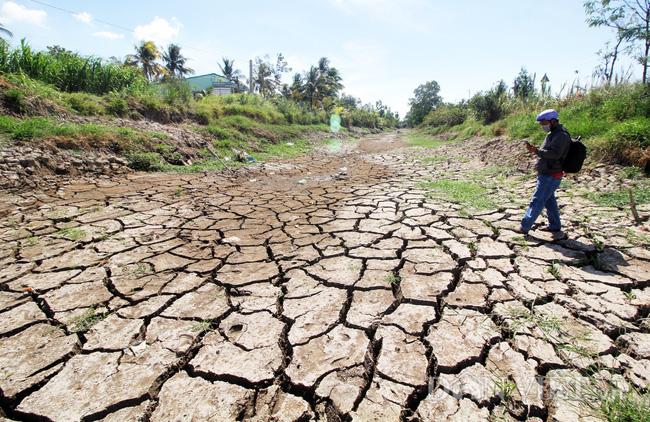 Các nước ASEAN chung sức vượt qua thách thức hạn hán - Ảnh 1.