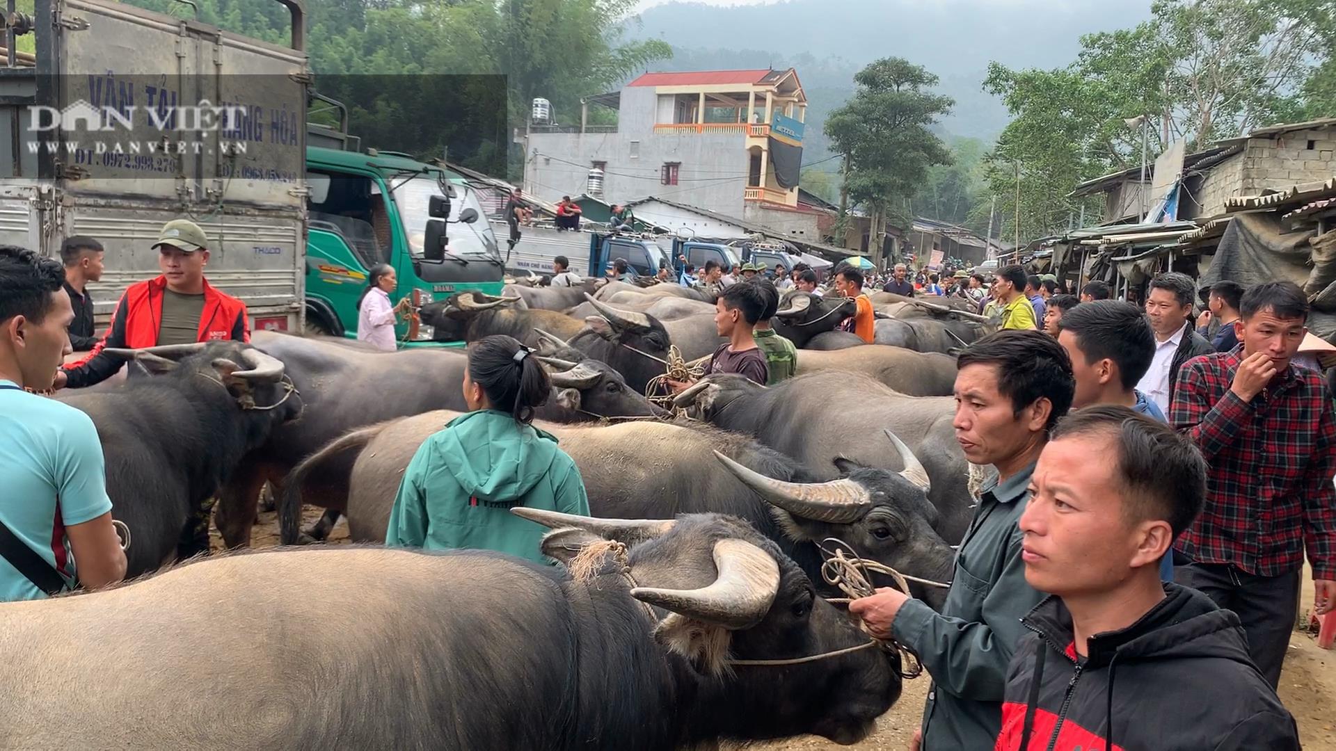 Bắc Kạn: Nguy cơ mất an toàn tại chợ trâu, bò Nghiên Loan - Ảnh 1.
