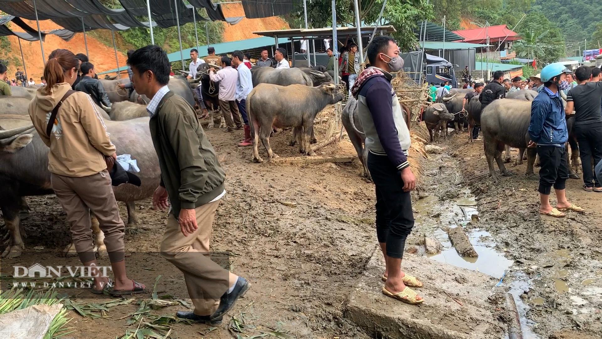 Bắc Kạn: Nguy cơ mất an toàn tại chợ trâu, bò Nghiên Loan - Ảnh 5.