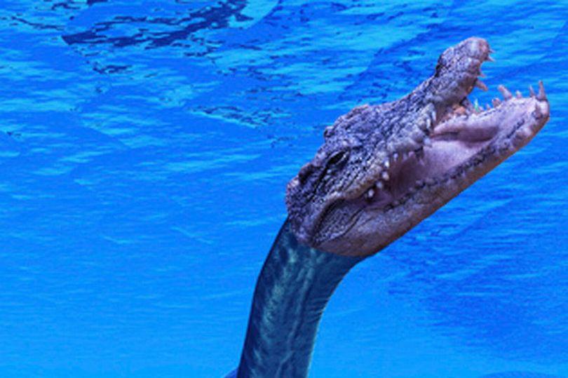 Bí mật về quái vật giống quái vật hồ Loch Ness - Ảnh 1.