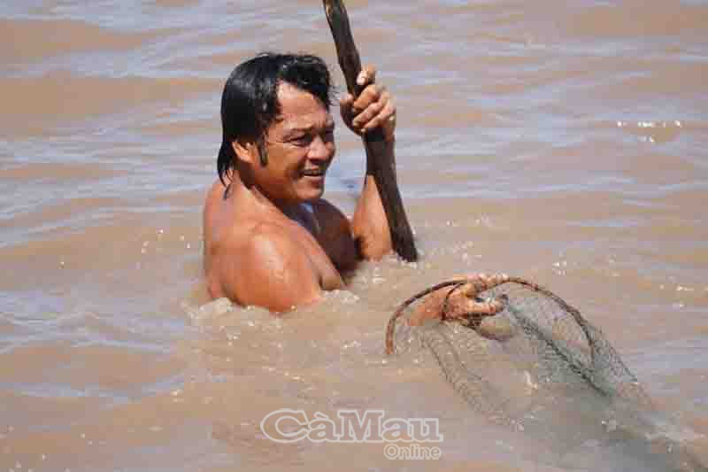 """Loài cá mồm đầy râu nào của Cà Mau khiến anh """"thợ săn"""" vừa thụt vừa thở hổn hển mới bắt được? - Ảnh 3."""