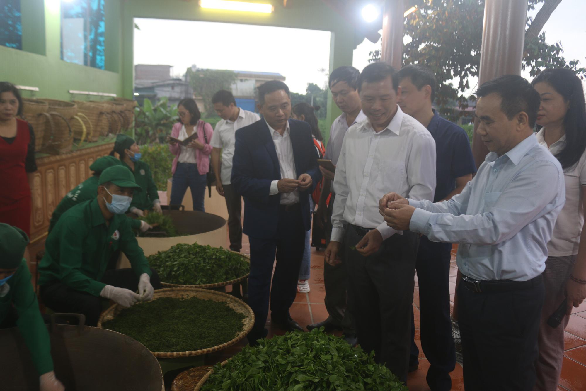 Nâng cao chất lượng góp phần phát triển thương hiệu chè Thái Nguyên - Ảnh 1.