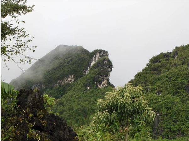 Bí ẩn truyền thuyết chim Hạc giúp Vua Gia Long tìm đất quý xây thành - Ảnh 8.