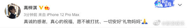 Vợ chồng Chae Rim cuối cùng đã có động thái nói về vụ ly hôn xôn xao showbiz Hàn - Trung sau 6 năm chung sống? - Ảnh 1.