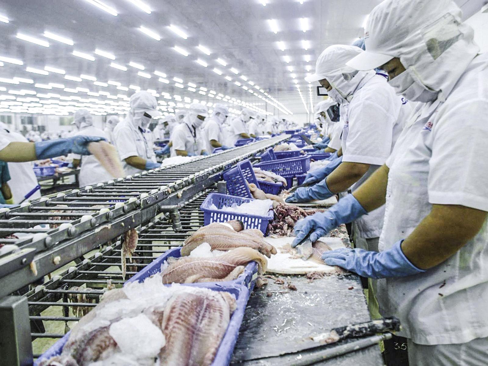 Thị trường hồi phục mạnh, xuất khẩu thủy sản 2020 tự tin sẽ thu về gần 8,6 tỷ USD - Ảnh 1.