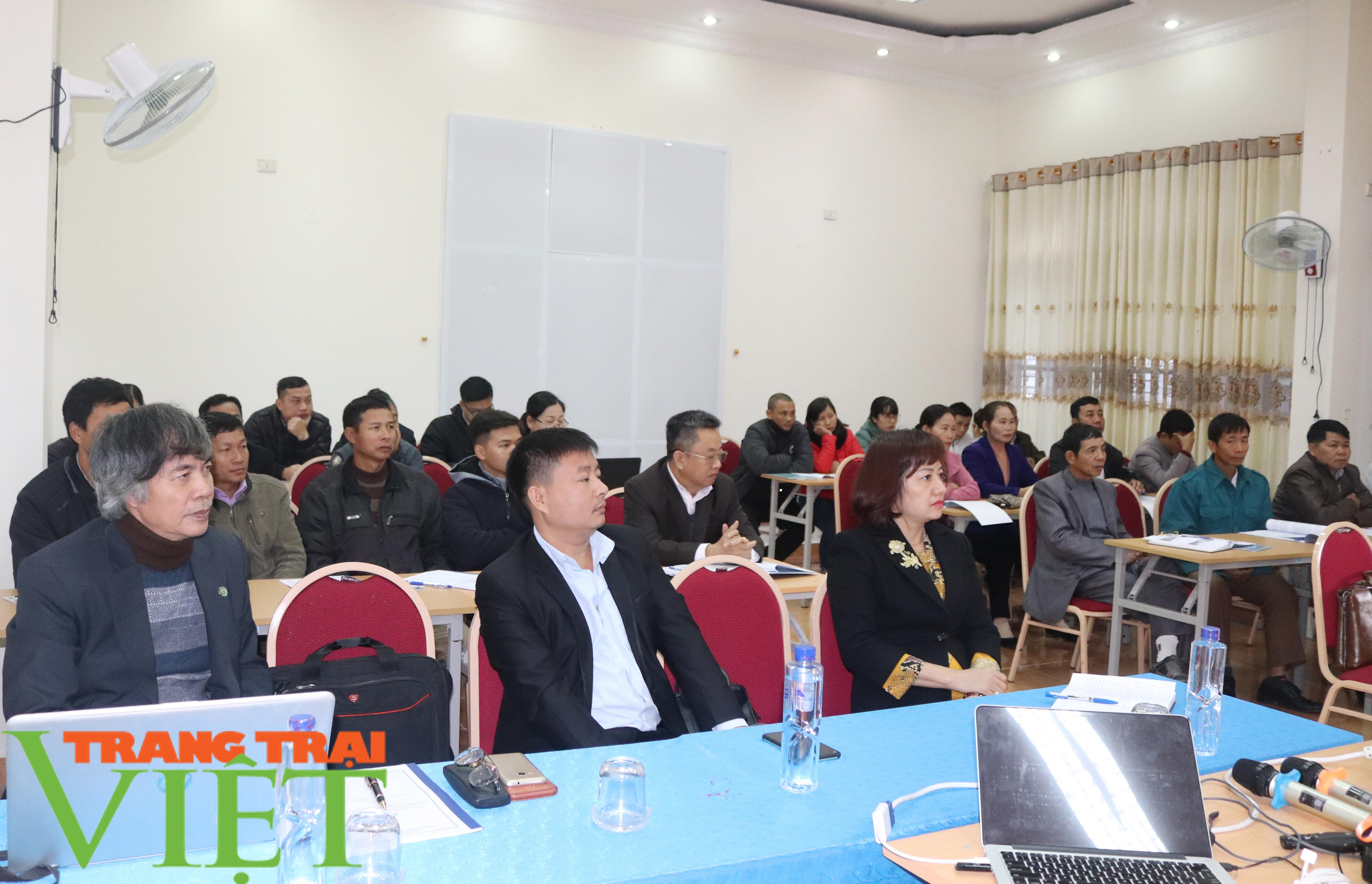 Sơn La: Tập huấn sản xuất rau an toàn và quy trình tưới nước tiết kiệm - Ảnh 1.