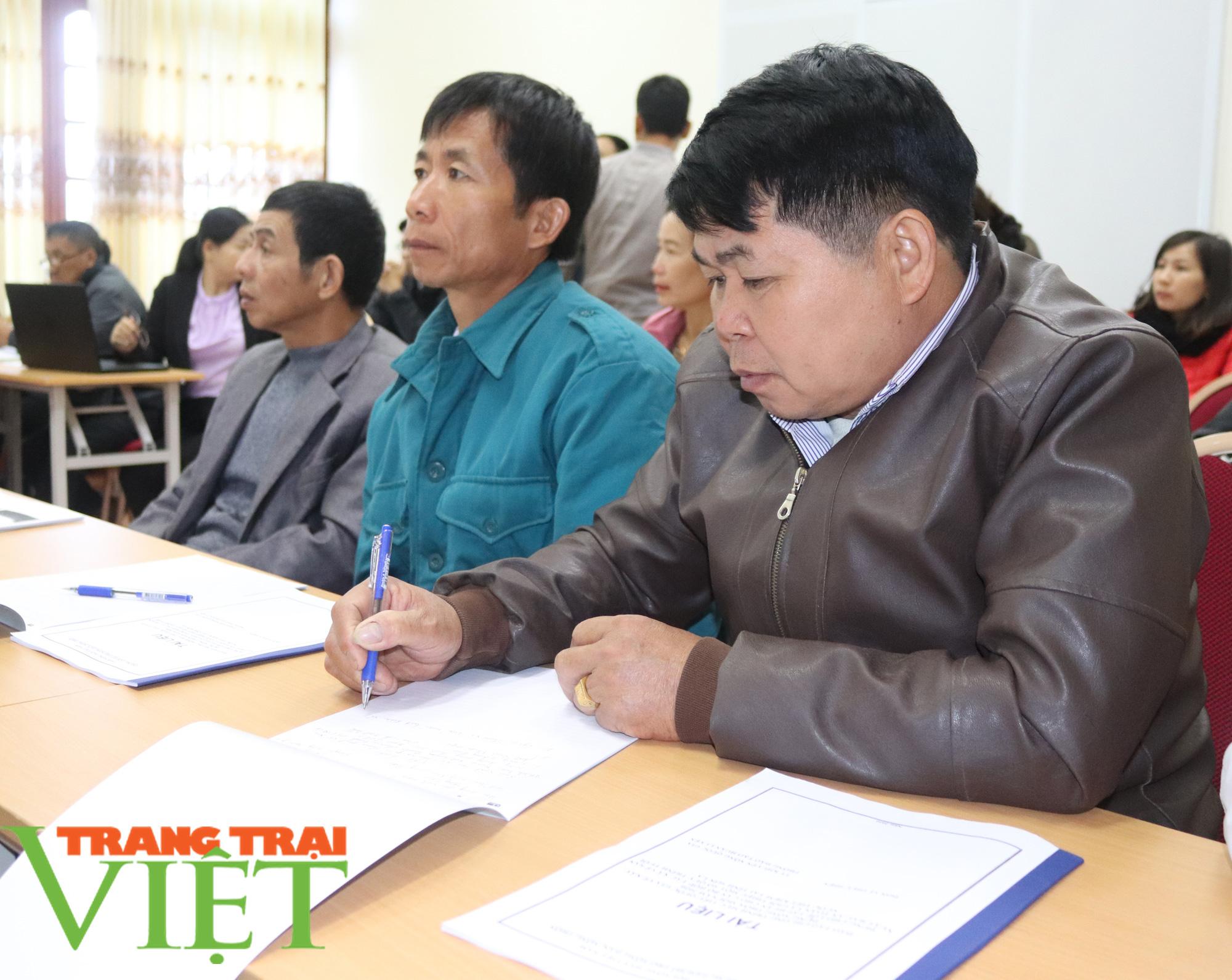 Sơn La: Tập huấn sản xuất rau an toàn và quy trình tưới nước tiết kiệm - Ảnh 4.