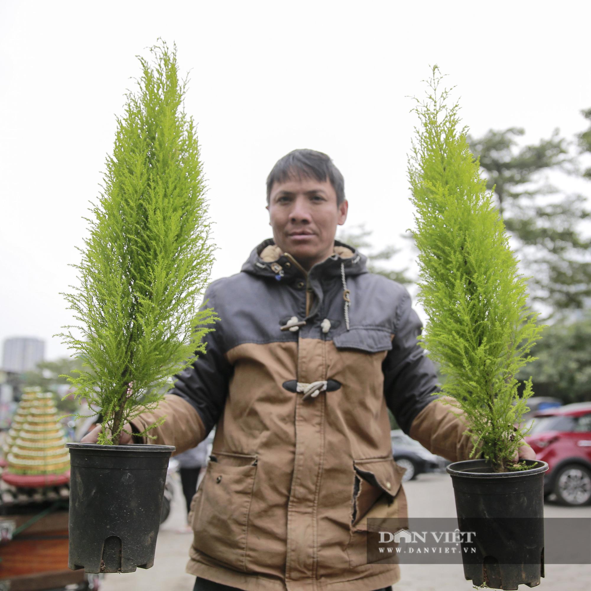 """Giá chỉ từ 100.000 đồng, """"bản sao"""" của cây thông thật đắt khách dịp Giáng sinh 2020 - Ảnh 5."""