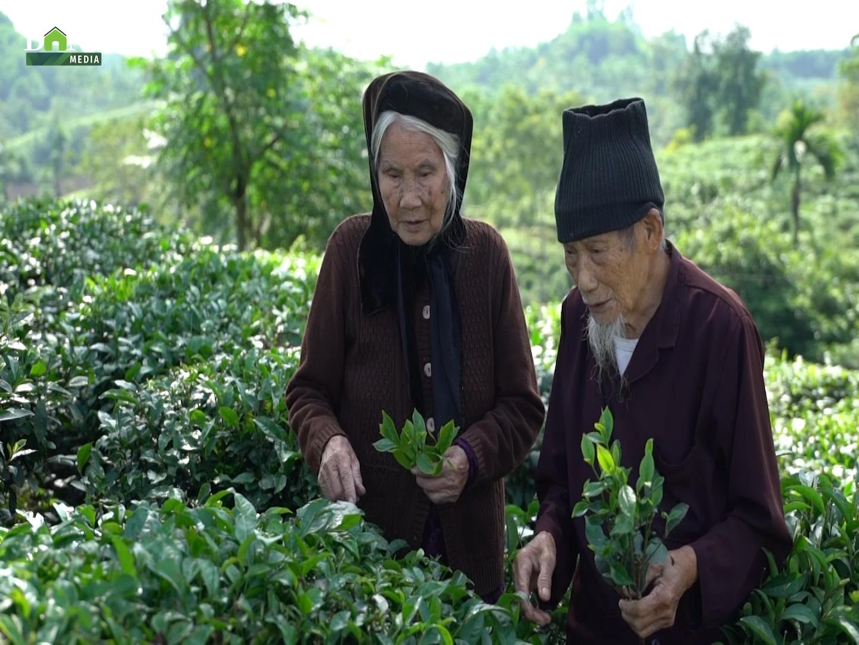 Chương trình mỗi xã, phường một sản phẩm OCOP: Điểm tựa cho nông sản Việt - Ảnh 5.