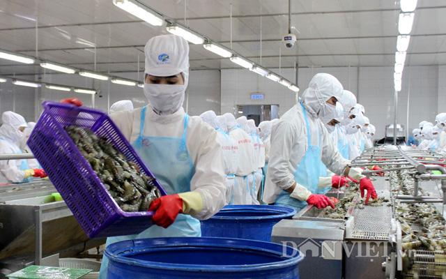 Ngành thủy sản cũng thường xuyên đối diện tình trạng thiếu lao động nghiêm trọng