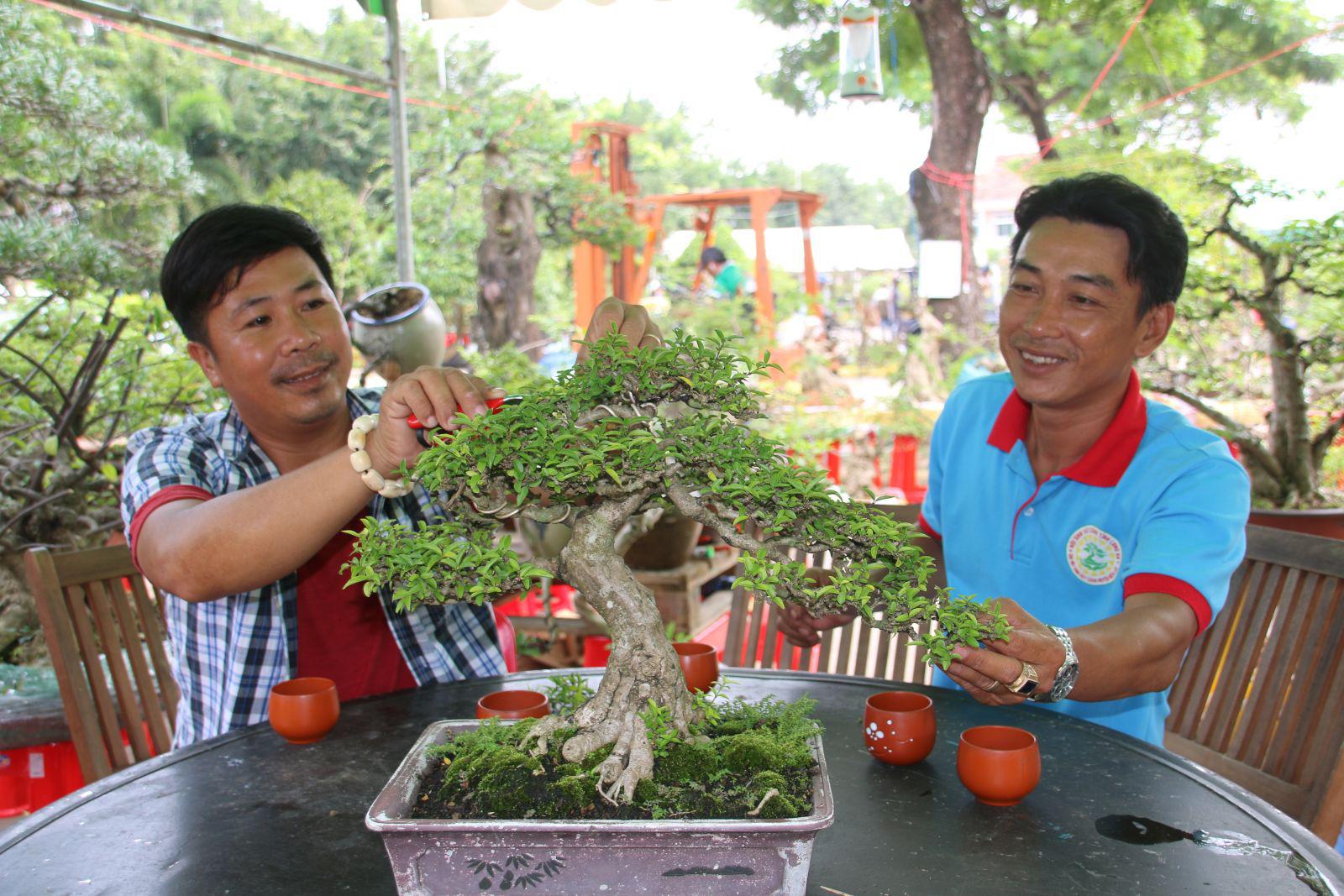 Long An: Nghề makeup cho cây kiểng bonsai, vừa làm vừa chơi cũng ra tiền, đến đàn bà con gái còn ham - Ảnh 2.