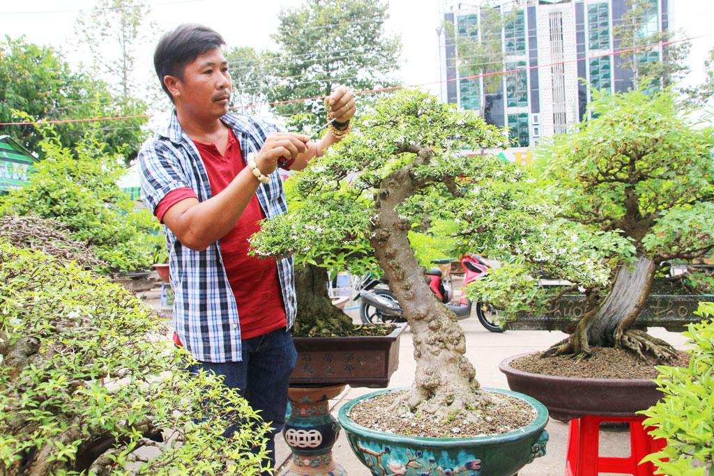 Long An: Nghề makeup cho cây kiểng bonsai, vừa làm vừa chơi cũng ra tiền, đến đàn bà con gái còn ham - Ảnh 1.