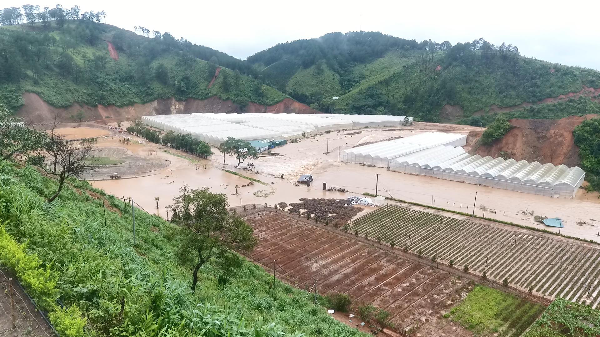 Hơn 15 năm phát triển NNCNC ở Lâm Đồng Bài 2: Không chỉ có lợi thế, còn nhiều vướng mắc khó khăn cho người dân - Ảnh 2.