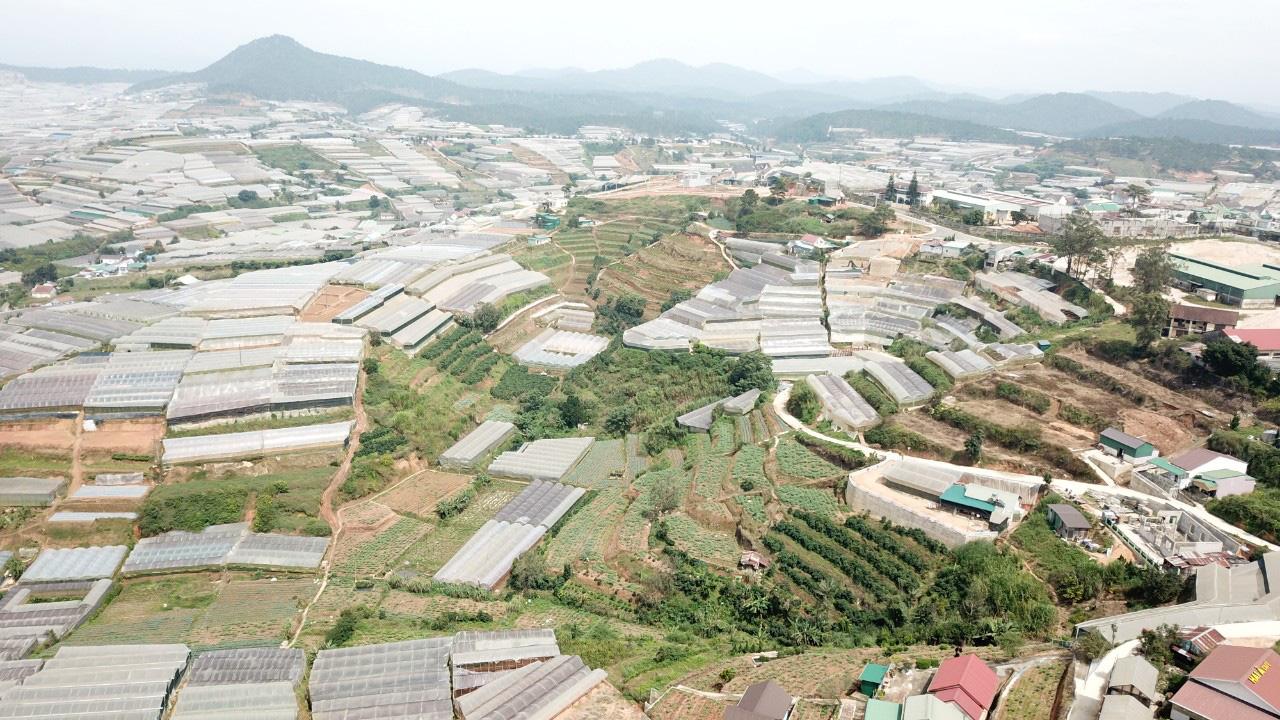Hơn 15 năm phát triển NNCNC ở Lâm Đồng Bài 2: Không chỉ có lợi thế, còn nhiều vướng mắc khó khăn cho người dân - Ảnh 1.