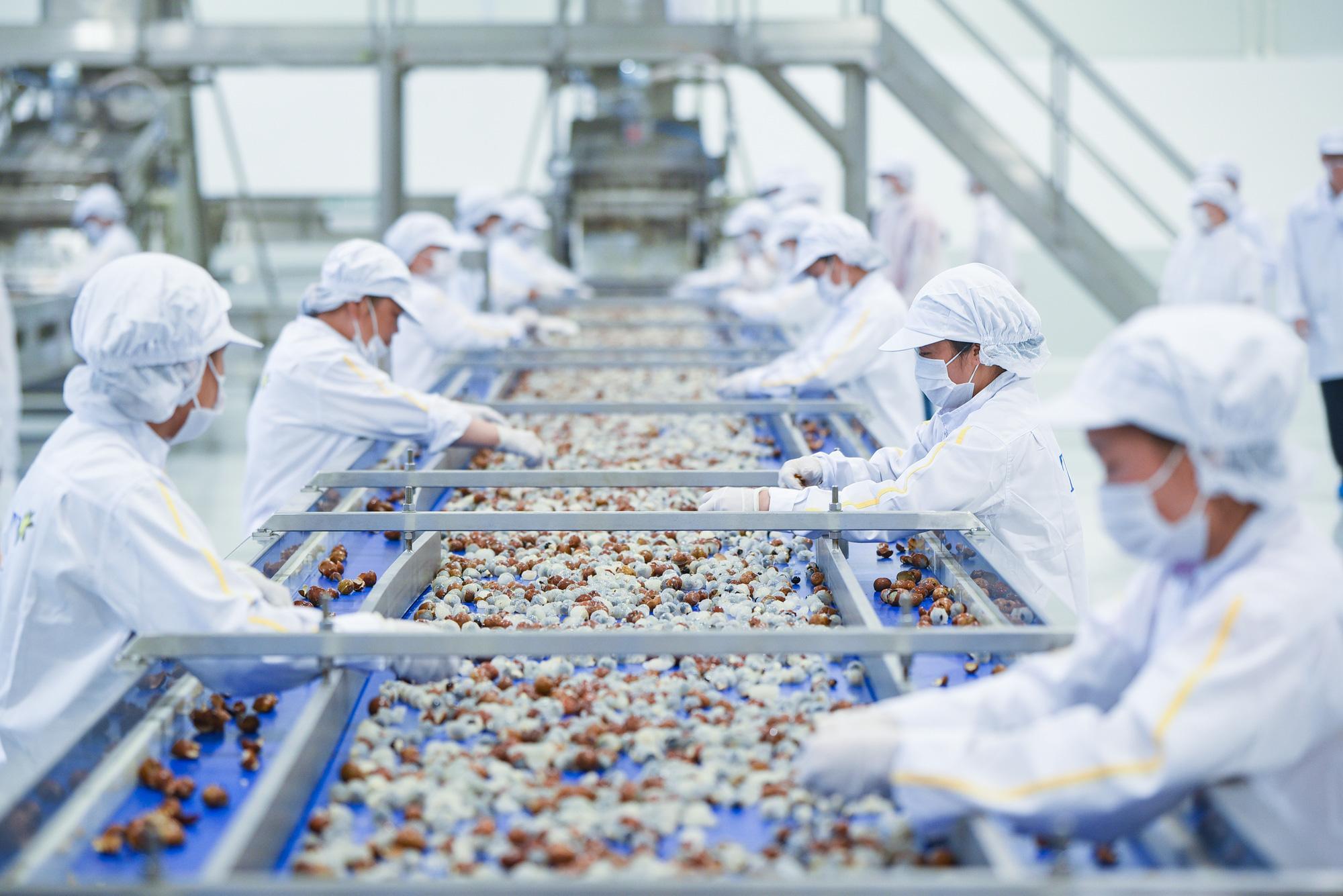 Bộ NNPTNT trình Thủ tướng giải pháp gì để đạt mục tiêu là 1 trong 10 nước chế biến nông sản hàng đầu?  - Ảnh 1.