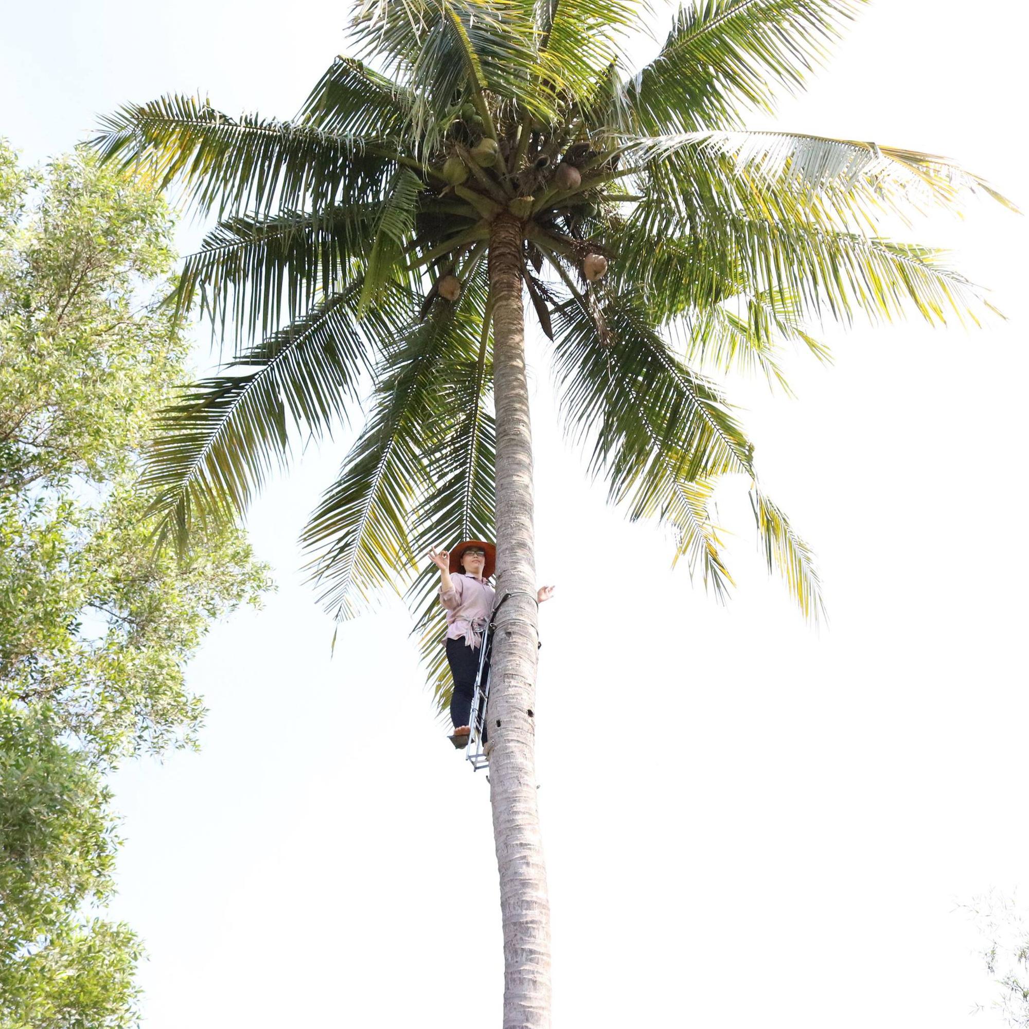 """Hai lúa miền Tây có biệt tài sáng kiến thiết bị leo hái dừa được tôn vinh là """"Nhà khoa học của nhà nông"""" 2020 - Ảnh 1."""