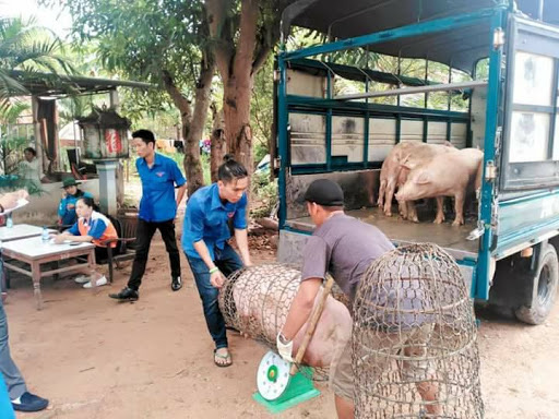 Giá nông sản hôm nay (24/12): Gần Tết giá lợn hơi vẫn tiếp tục tăng mạnh, giá tiêu theo đà đi xuống - Ảnh 4.