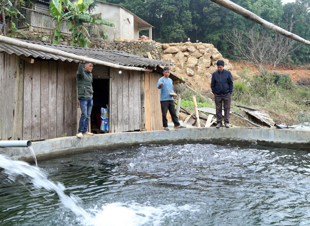 Lào Cai: Đến khổ, nuôi cá hồi bán chật vật, mang tiếng cá quý tộc mà giá bán rẻ hơn cả cá trắm đen - Ảnh 1.