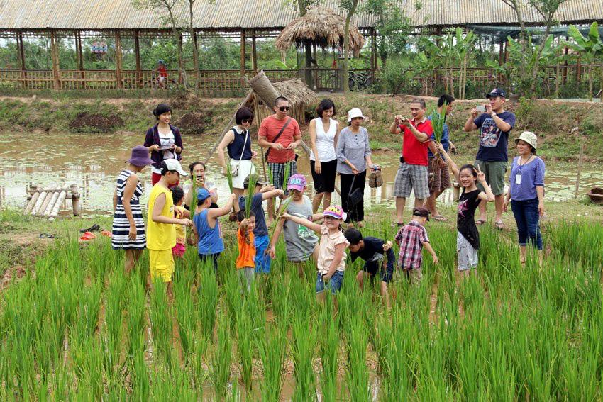 Bàn giải pháp phát triển trang trại, HTX kết hợp du lịch nông nghiệp - Ảnh 1.
