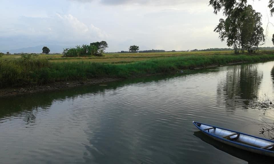 Kể chuyện làng: Bến sông quê và những người bất tử - Ảnh 2.