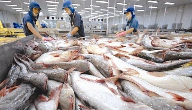 Vĩnh Hoàn (VHC) chào mua 50% vốn của công ty bánh phồng tôm - Ảnh 1.