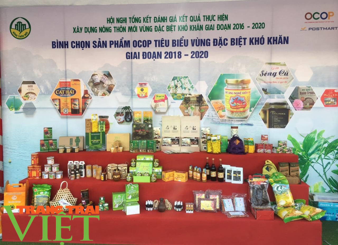3 sản phẩm OCOP của Sơn La được vinh danh - Ảnh 4.