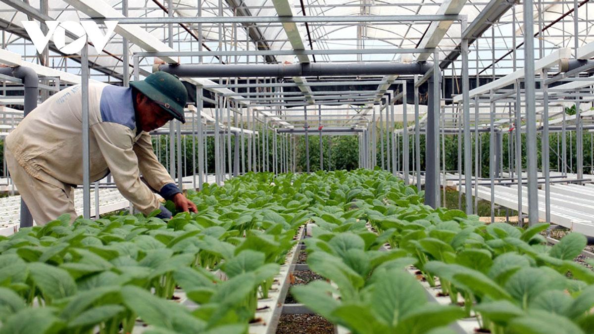 """Kết nối tiêu thụ nông sản không chỉ là """"thuận mua, vừa bán"""" - Ảnh 2."""