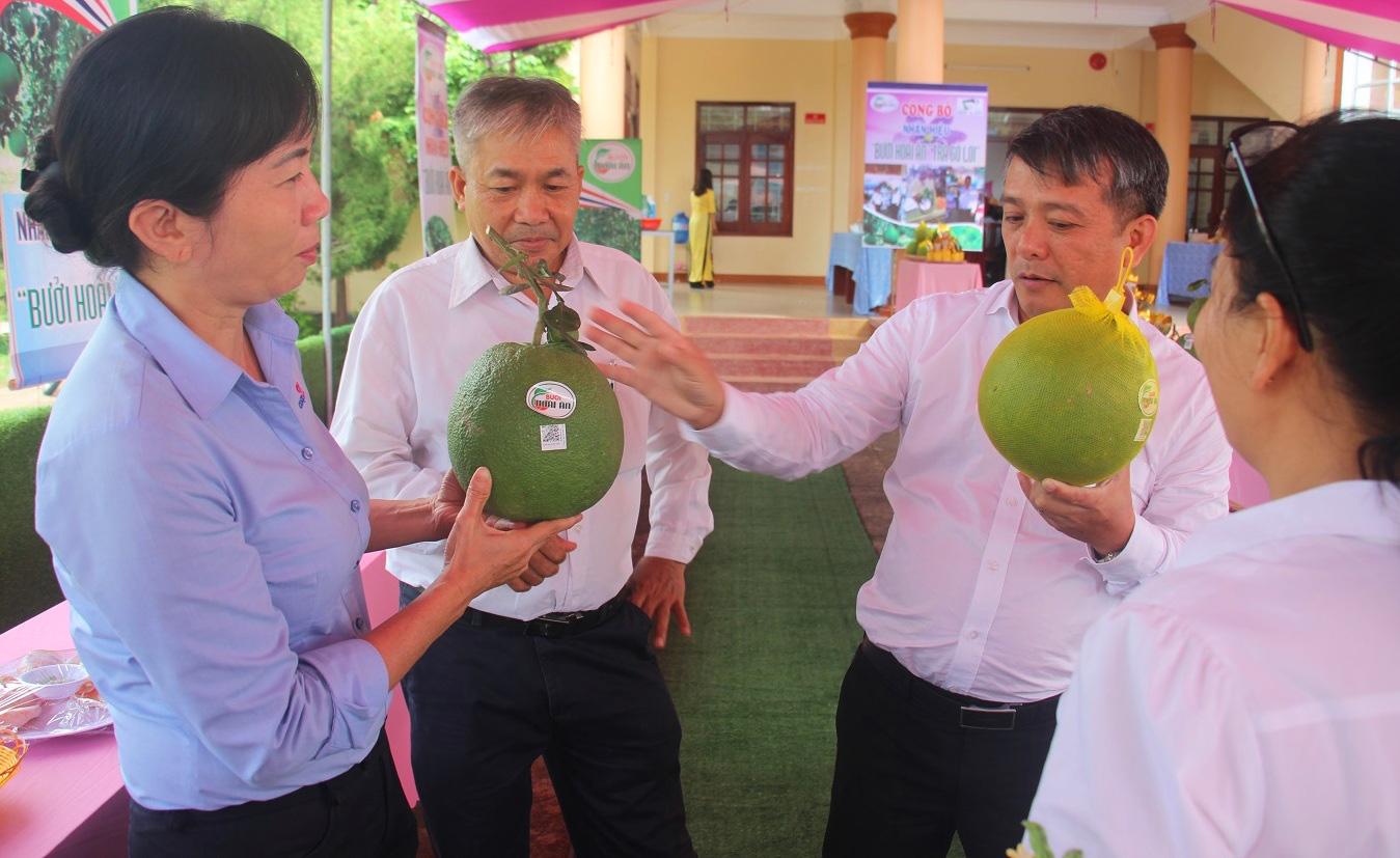 Thủ tướng giao nhiệm vụ 61 xã đạt chuẩn nông thôn mới, Bình Định hoàn thành vượt chỉ tiêu  - Ảnh 4.