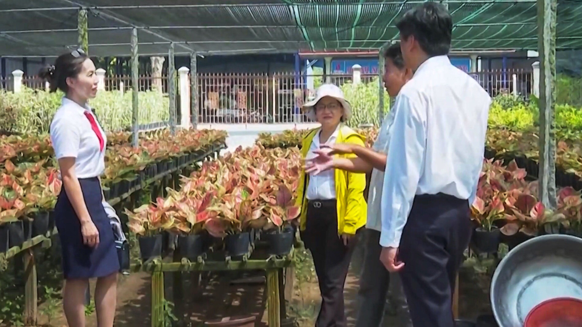 Agribank góp phần tạo sức bật mới cho làng hoa Sa Đéc   - Ảnh 1.