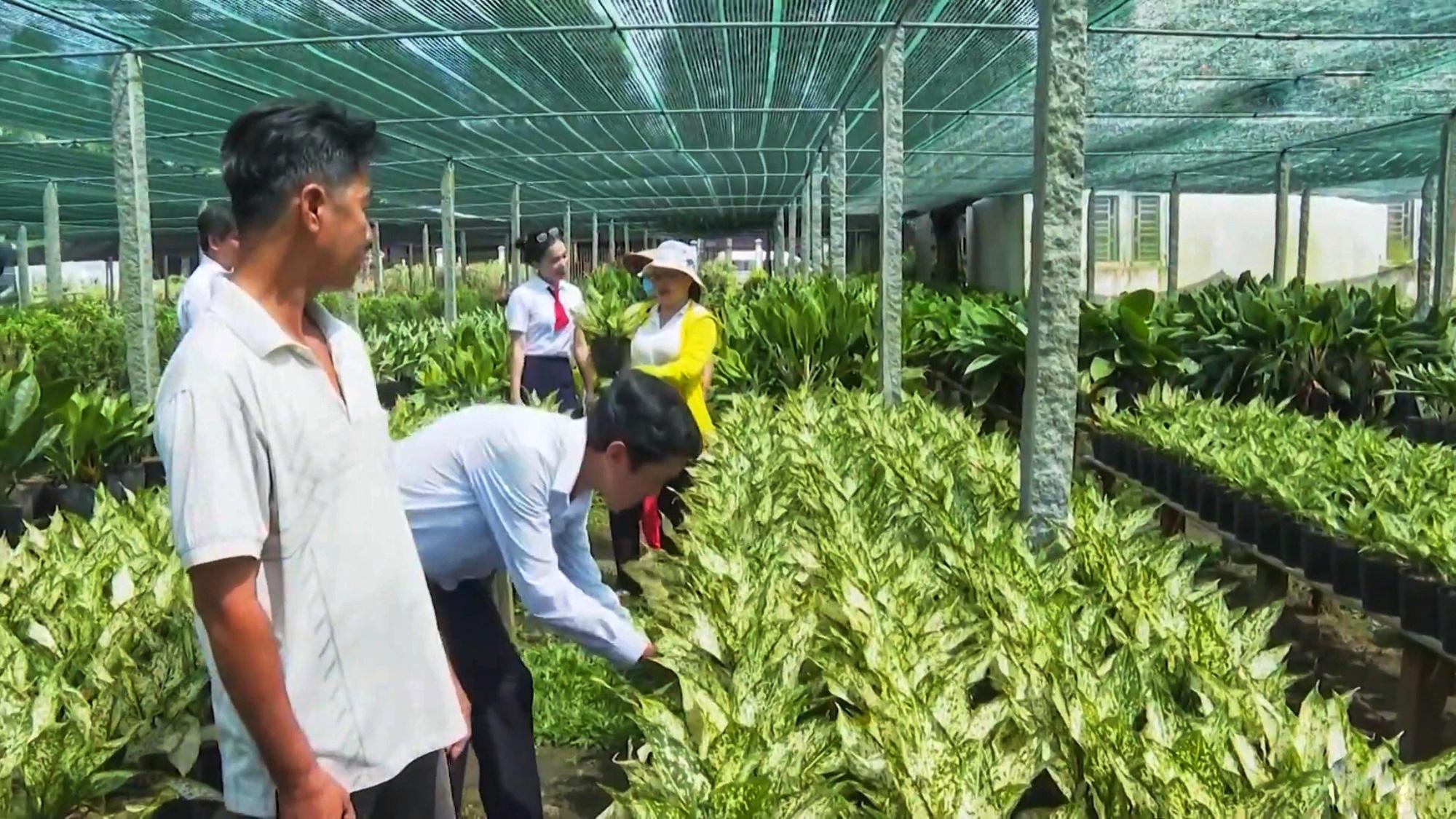 Agribank góp phần tạo sức bật mới cho làng hoa Sa Đéc   - Ảnh 3.