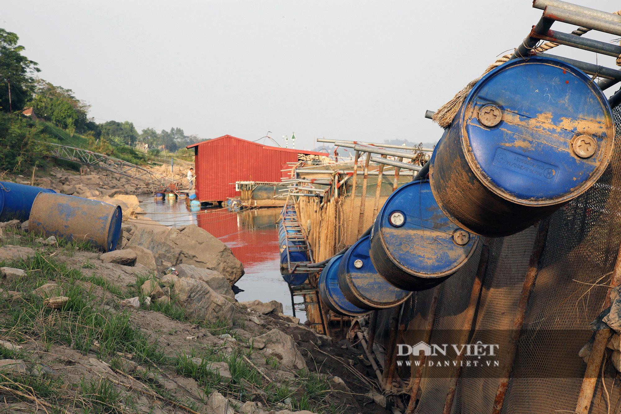 Dân nuôi cá trên sông Đà hút cát để cứu cá do nước sông cạn - Ảnh 2.