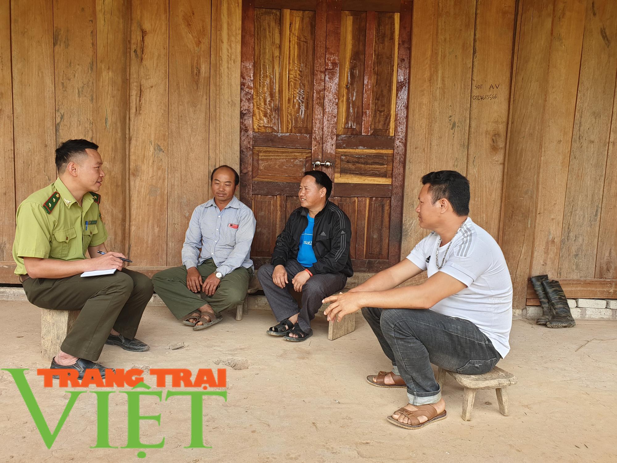 """Lợi ích """"kép"""" từ phát triển kinh tế rừng ở Điện Biên - Ảnh 4."""