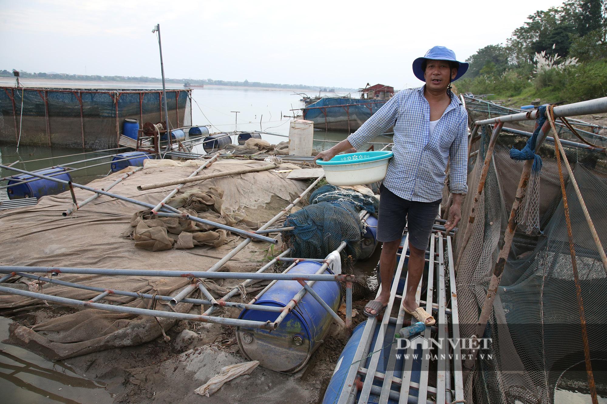 Dân nuôi cá trên sông Đà hút cát để cứu cá do nước sông cạn - Ảnh 3.