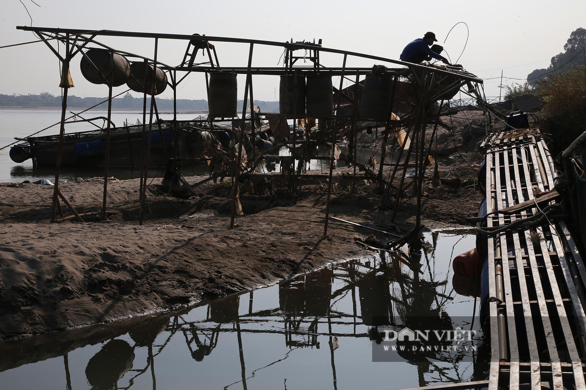 Dân nuôi cá trên sông Đà hút cát để cứu cá do nước sông cạn - Ảnh 4.
