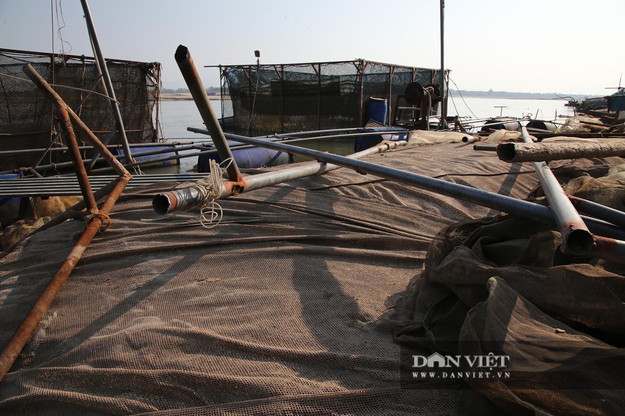 Dân nuôi cá trên sông Đà hút cát để cứu cá do nước sông cạn - Ảnh 7.