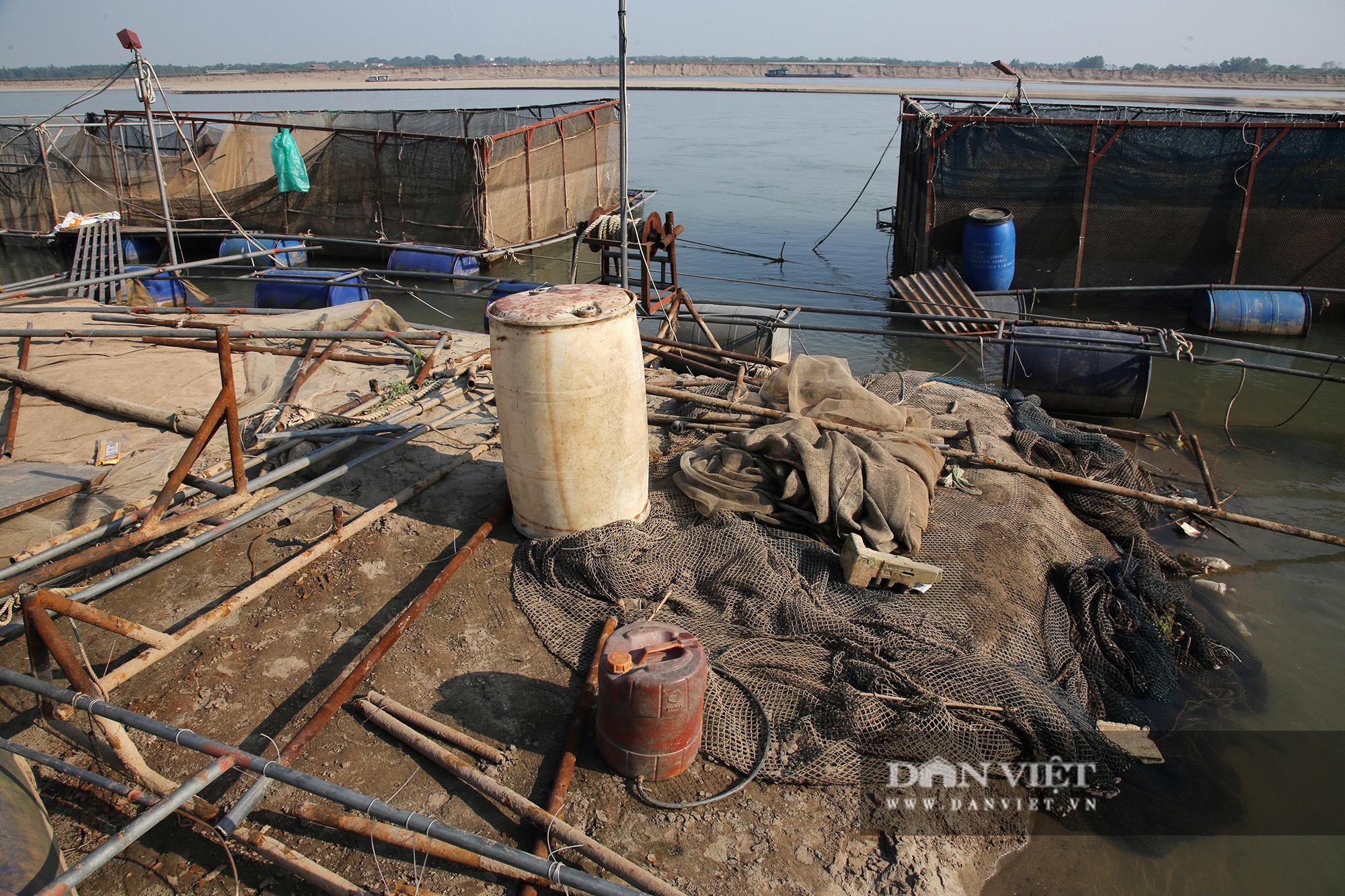 Dân nuôi cá trên sông Đà hút cát để cứu cá do nước sông cạn - Ảnh 8.