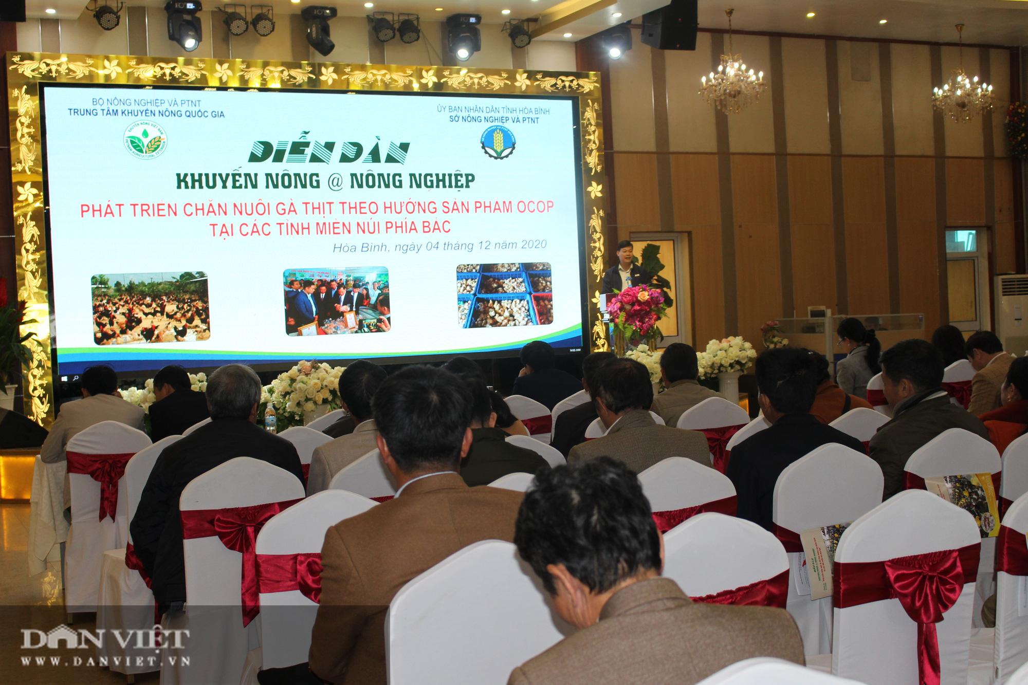 Diễn đàn Khuyến nông @ Nông nghiệp: Phát triển chăn nuôi gà thịt theo hướng sản phẩm OCOP  - Ảnh 3.