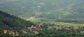 Bản nghèo Pơ Mu giữ rừng bền vững - Ảnh 2.