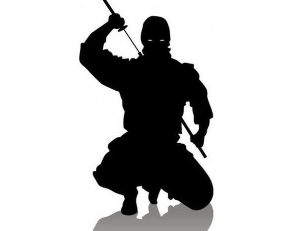 """Cuộc đời huy hoàng ninja """"xuất quỷ nhập thần"""" nổi tiếng Nhật Bản - Ảnh 6."""