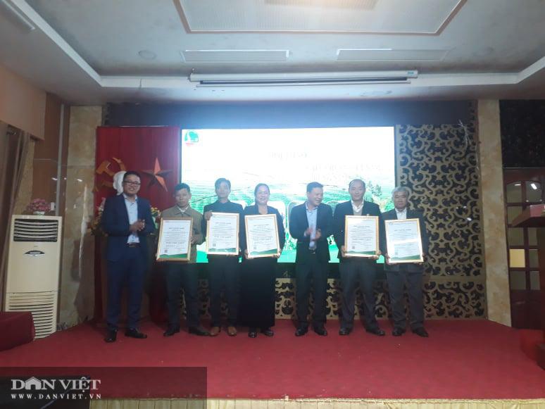 Thái Nguyên: Sản xuất chè hữu cơ theo tiêu chuẩn Việt Nam góp phần xây dựng NTM - Ảnh 7.