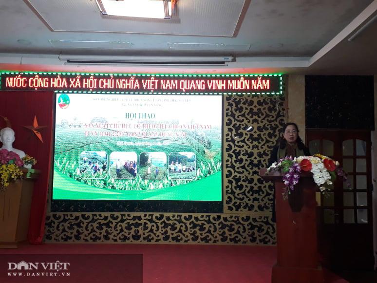 Thái Nguyên: Sản xuất chè hữu cơ theo tiêu chuẩn Việt Nam góp phần xây dựng NTM - Ảnh 4.