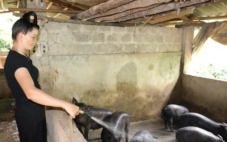 Nông dân Thuận Châu thi đua sản xuất, kinh doanh giỏi