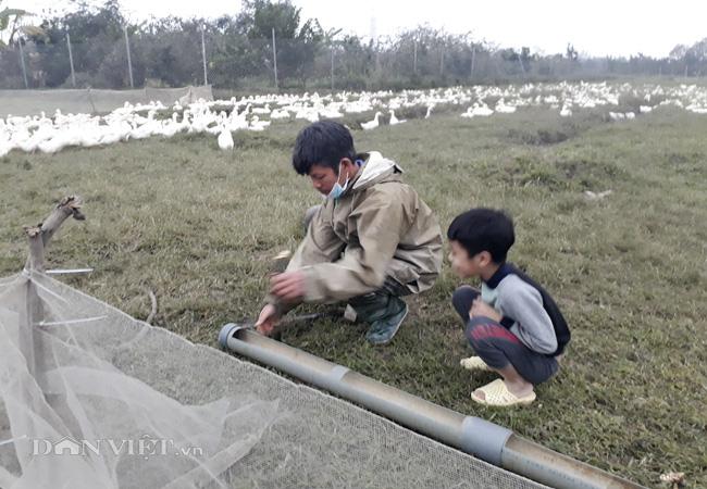Chuyện ghi ở ổ dịch cúm A/H5N6 Hà Nội: Phập phồng lo trắng tay - Ảnh 4.